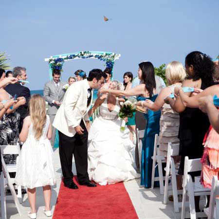 Wedding Butterfly Release Packages