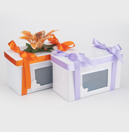 Decorator Box  (butterflies not included) Available as an option with all packages
